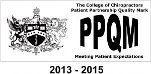 PPQM 2013_2015 logo